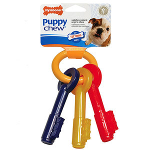 Nylabone Puppy Bacon Keys / L